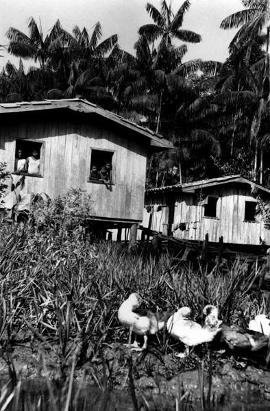 Comunidades de remanescentes nos rios de Abaetetuba - PA | 2006
