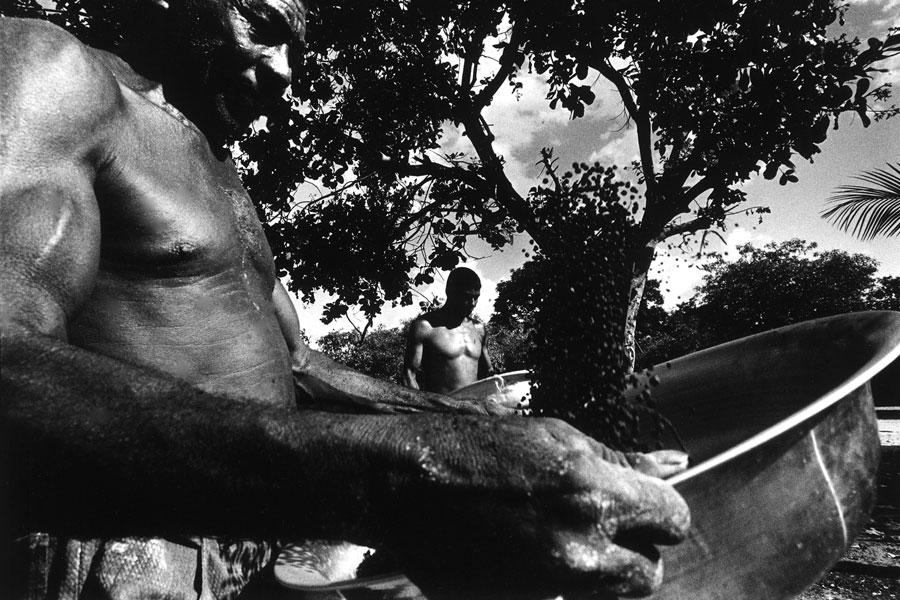 Comunidade Igarapé Preto Oeiras do Pará - PA | 2003