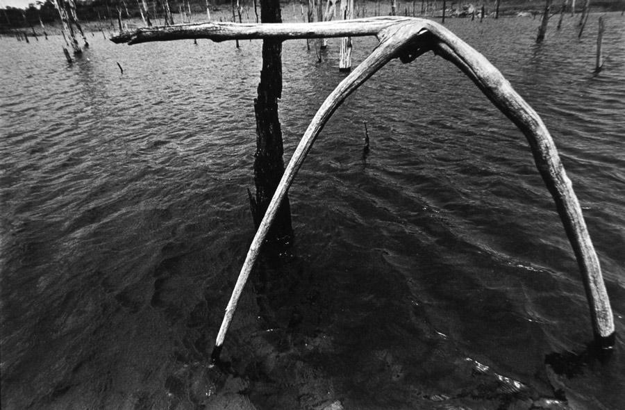 Lago de Tucuruí | 2011